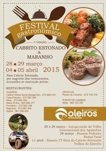 festival gastronomico_pub